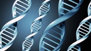 Впервые на Алтае пройдет медико генетическая конференция